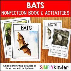 Bats Kindergarten Book and Activities1