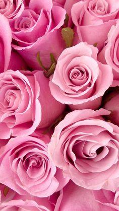 Pin by oksana zb on pinterest rose mightylinksfo