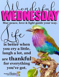 🌞😊🌻 May peace, love & light guide your way. Have a wonderful & blessed Wednesday. Wednesday Morning Greetings, Wednesday Morning Quotes, Wednesday Prayer, Blessed Wednesday, Afternoon Quotes, Wonderful Wednesday, Wednesday Motivation, Morning Greetings Quotes, Morning Messages