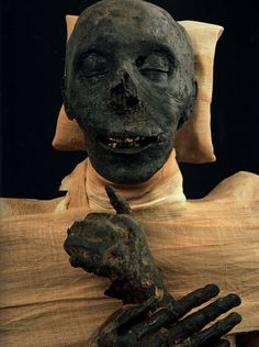 III. Thutmose Egyptian Mummies, Egyptian Art, Egyptian Beauty, Ancient Egypt, Ancient History, Couple Halloween Costumes For Adults, Mummy Costumes, Woman Costumes, Pirate Costumes