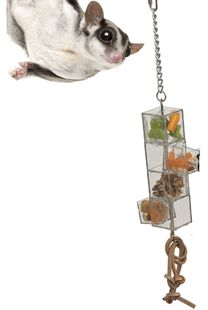 New .... Doors And Drawers Foraging Toy. Gliders are smart and get bored easily, this is one way to keep them occupied.