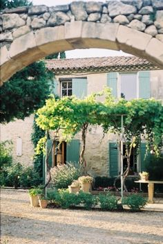 The simple handyman-level arbor for grapes or wisteria out of cement-based pipes with right-angle connectors to overhead cross pieces.