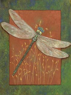 Fleeting Fancy Dragonfly Signed 12 x 16 inch Fine Art Print