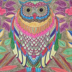 #owl#eule#uhu##leaves#blätter#secretgarden#dergeheimegarten#johannabasford#adultcoloringbook#erwachsenenmalbuch#ausmalen#meditatiom#achtsamkeit#mindfulness#happiness#joy#freude#happinez#coloring#drawing#buntstifte#garden#garten#nature#natur#bird#vogel#patterns#muster#coloredpencil