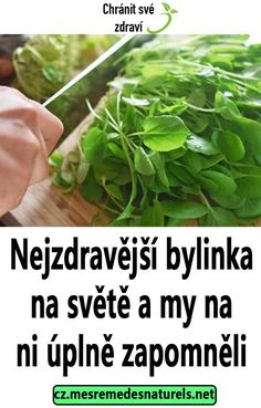 Nejzdravější bylinka na světě a my na ni úplně zapomněli Korn, Keto Recipes, Food And Drink, Herbs, Gardening, Health, Fitness, Medicine, Herbs For Health
