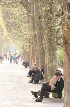 Jardin des Plantes - Paris 5e. I LOVE thuis place in the summer ♡ :ditto!
