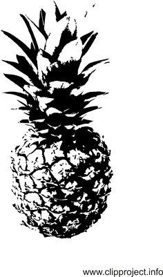 Schwarz Weiss Cliparts Ananas