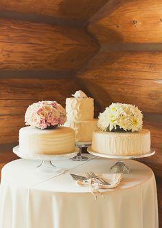 Tracie   Larry Wedding (Flagstaff, Arizona)
