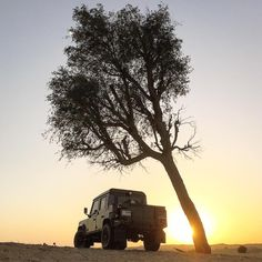 Al Qudra. Land Rover. Ghaf Tree. Sunset. Perfect end to the day. #MyDubai #Sunset #AlQudra #GhafTree #Desert #LandRover #LandRoverMENA #LandRoverDefender #Defender110 #DefenderCrewCab #OffRoad #4x4