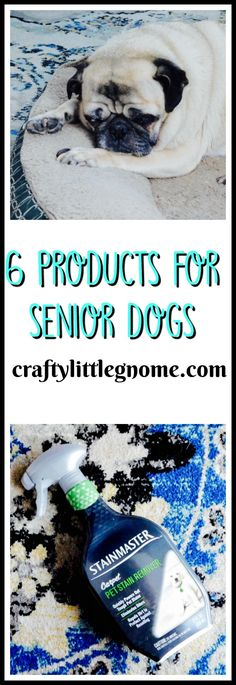 #ad Products for senior dogs. Help keep your older fur babies healthy and  comfortable with these 6 great products for senior dogs. #CarpetProtect #CollectiveBias