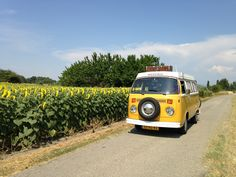 Sunflowers! Our T2 VW Westfalia in France.