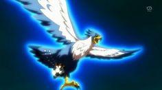 Alma de Falco/Matatagi