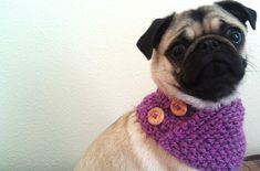 Ravelry: The Triangle Cowl for Tiny Creatures pattern by Sylvia Bo Bilvia