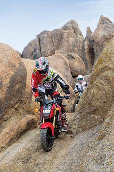 Honda Grom off-road rock action