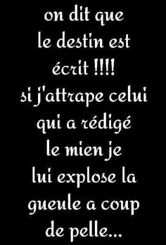 French Quotes, Visual Statements, Coincidences, Animal Quotes, Change Quotes, Education Quotes, Words Quotes, Decir No, Positive Quotes