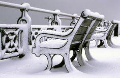 Snow Covered Bench on Hove Promenade. (by Alan-Mackenzie) Brighton Marina, Brighton And Hove, I Love Winter, Winter Time, Brighton Photography, Brighton Houses, City By The Sea, British Isles