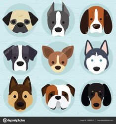 depositphotos_145895513-stock-illustration-set-of-cute-dogs.jpg 1.600×1.700 pixels