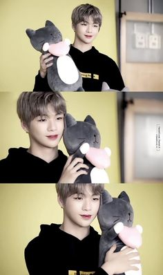Daniel and cats