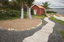 Pedestrian walkway for beach