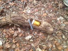 A slightly different take on the fake stick geocache. Usually you see a piece sawed off the end, a hole drilled in the long piece for the container, and the small end attached with a hinge to cover the hole. Here they have hollowed out a compartment on the under side and attached a swinging arm to hold the container in place when closed. (pinned from Twitter to Creative Geocache Containers - pinterest.com/islandbuttons/creative-geocache-containers)