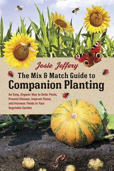 """""""Use this companion planting guide to begin a bountiful garden with plants that share a symbiotic relationship."""""""