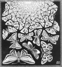 mc escher bugs - Google Search