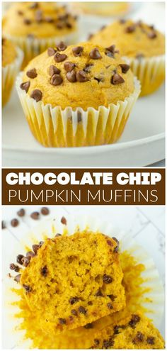 Fluffy and delicious Pumpkin Chocolate Chip Muffins are going to become your fall favorite! Full of pumpkin puree, pumpkin pie spice, and mini chocolate chips – they're simple and delicious.