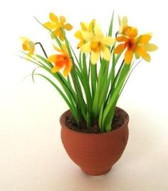 Flowers, plants & gardens. DIY  & ready made.