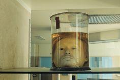 Diogo Alves' pickled head.
