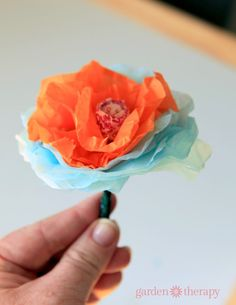 How to Make Lollipop Flowers - the magic of spring - plant magic jellybeans and grow lollipop flowers.