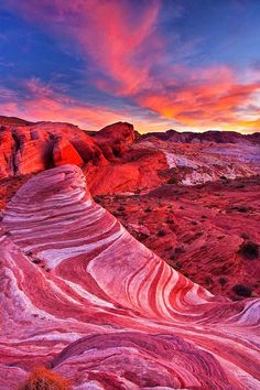 Sonoran Desert, Arizona United States... Looks like it's another planet... #AmazingPlaces