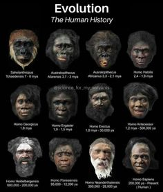 Pseudo Science, Science And Nature, Anthropologie, Homo Habilis, Human Evolution, Evolution Science, The Evolution, Early Humans, World History