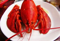 Find out how to steam lobster - a great alternative to boiling. Discover how many Boston seafood restaurants cook lobster by steaming them.