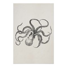 Pen and Ink Octopus on Behance | Art | Pinterest | Octopus ...