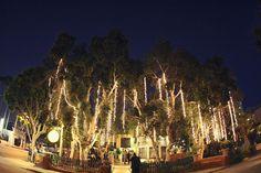 The Victorian   Santa Monica, CA -repinned from California celebrant https://OfficiantGuy.com #weddingslosangeles #laofficiant