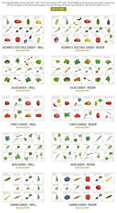 This Site Gives You Suggested Plots Based On A 4x4 Garden As Well As Tips  And