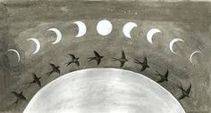 Image result for moon phase illustration