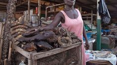 The 53-year-old says her earnings from bush meat keep her four children in school and she laments the sudden loss of business as public health officials warn that bush meat may be contaminated with the dreaded Ebola virus.