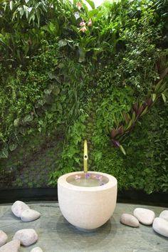 Mur végétal dans l'Espace Weleda #espaceweleda #paris #beauté @Sylvie Walerysiak Pruneau weleda