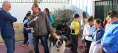 MOTRIL.Organizada por la Asociación Conecta, en colaboración con el área de Servicios Sociales y la Asociación del Perro de Ayuda Social 'Hope Animals', ha tenido como objetivo