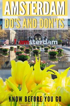 Amsterdam - Do's and Don't - Everything you should know before visiting Amsterdam. While Amsterdam i Amsterdam Itinerary, Amsterdam Travel Guide, Visit Amsterdam, Amsterdam Things To Do In, Travel To Amsterdam, Amsterdam City, Spring Break Destinations, Travel Destinations, Medan