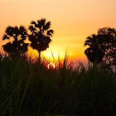 Und schon wieder Sonnenuntergang... #taipantouristik  #taipan_thailand