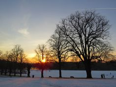 Wollaton in the Snow 29.12.14