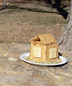 "Make a ""bird house"" that is really a bird feed from odds and ins from the kitchen. Kids will love making it and setting it out to watch the birds enjoy!"