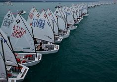 España: Campeonato Gallego de Optimist 2013. Wow...what I learned to sail in...awesome!
