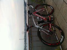 本日早朝の東京湾です。夜明けが遅くなりました。