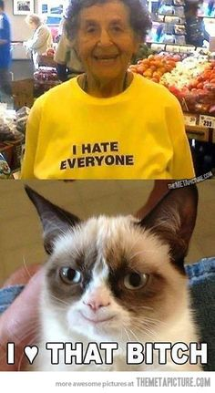 Oh grumpy cat. You're so cool.