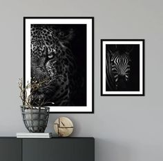 Photography is a passion but Animal Photography is an emotion. Check out the animal category of our posters for some amazing animal pictures to decorate your walls. Check out the link in bio. #animal #wallpaper #wallart #animalposter #cheetahposter #zebraposter #blackcheetah #blackandwhiteposter #posterlove #posterdesignart
