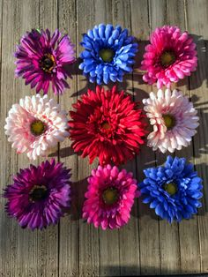 9 large daisy magnets in an assortment of colors and designs.