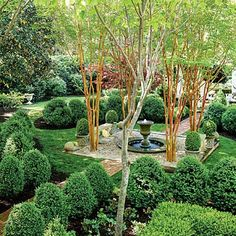 Boxwood Courtyard Garden | A sloping side lawn offered the ideal place for a garden between a new porch and an arbor, creating intimate and shaded beauty without burdensome maintenance. | SouthernLiving.com